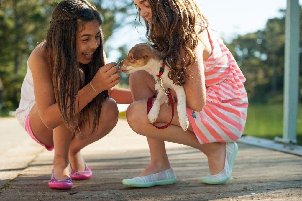 girls, dog, playing